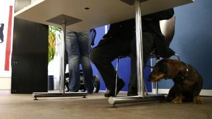 Dem deutschen Wähler sind viele Dinge wichtiger als die Netzpolitik.