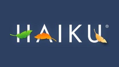 Haiku wird wohl keinen anderen Kernel benutzen.