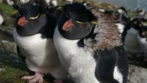 Der Linux-Kernel 3.12 steht zum Download bereit.