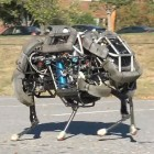 Boston Dynamics: Wildcat hoppelt und galoppelt