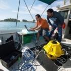 Datenübertragung: Internet fürs Meer