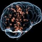 Neurowissenschaften: US-Unternehmen Kernel entwickelt Hirnschrittmacher