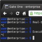 Gate One: HTML5 Terminal Emulator mit X11-Unterstützung