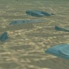 Sandia Laboratory: Multifortbewegungsroboter für Geheimeinsätze