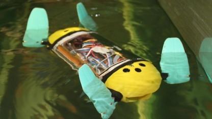 Tauchroboter U-Cat: alternative technische Lösungen von der Natur abschauen