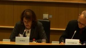 Dorothee Belz (Microsoft) und Nicklas Lundblad (Google) bei der Anhörung im EU-Parlament