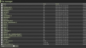 Dieser Screenshot soll belegen, dass die Angreifer Shell-Zugriff erlangt haben.