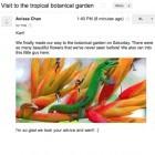 E-Mail-Tracking: Gmail lädt Bilder wieder automatisch