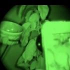 Snooperscope: Nachtsichtgerät für Smartphones