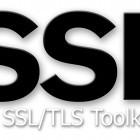 OpenSSL: Sieben Fehler gefunden und repariert