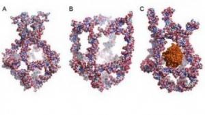 Nanokäfig: Öffnen und Schließen unter Einwirkung von Temperatur
