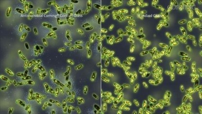 Antimicrobial Gorilla Glass: mit Silberionen gegen Keime