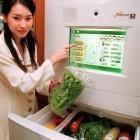 Thingbot: Botnetz infiziert Kühlschrank