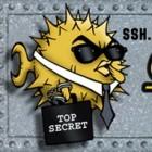 Kryptographie: OpenSSH rüstet auf
