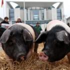 TTIP: EU setzt Gespräche über Abkommen mit USA teilweise aus