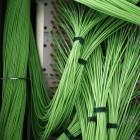 Telekommunikation: Netzausbau in Deutschland zu langsam