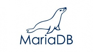 MariaDB Enterprise 1.0 mit REST-API