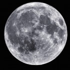 Lunar Catalyst: Nasa schreibt Entwicklung von Mondlandefahrzeugen aus