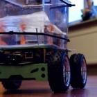 Bewegungssteuerung: Fisch fährt Aquarium