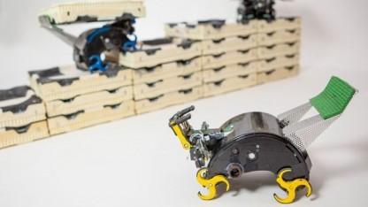 Termes-Roboter: zusammen und ohne Aufsicht etwas Komplexes schaffen