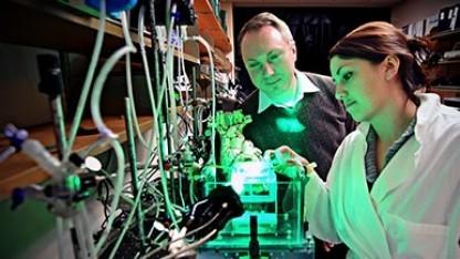 Igor Efimov und Sarah Gutbrod im Labor: angepasste Sensoren statt Geräte mit Einheitsgröße