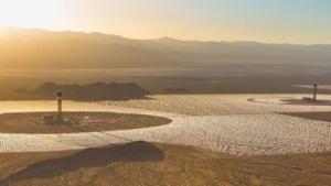 Solarthermiekraftwerk Ivanpah: Vögel mit angesengtem oder verbranntem Gefieder