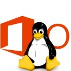 Büroanwendungen: Erneute Gerüchte um MS Office für Linux