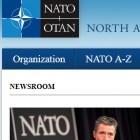 Cyber Berkut: Hacker legen Nato-Webseiten lahm