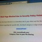 Overblocking: Microsoft sperrt Onlinemagazin Torrentfreak
