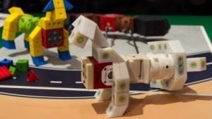 Kinematics: Jungs bauen Fahrzeuge, Mädchen bauen Tiere, alle bauen Roboter.
