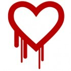 Heartbleed-Bug: Techfirmen zahlen Millionen für Open-Source-Sicherheit