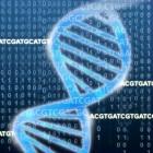 Erbgut: US-Wissenschaftler erweitern das genetische Alphabet