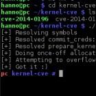 Linux-Kernel: Root-Rechte für Nutzer