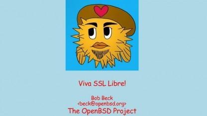 Für LibreSSL gibt es viele konkrete Pläne.