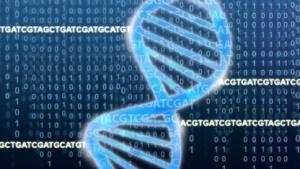 DNA-Doppelhelix: Mehr Buchstaben für mehr Geschichten