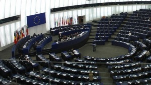 Eine einzige Piratin aus Europa hat es ins EU-Parlament geschafft.