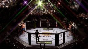 Schwergewichte im Octagon: Alistair Overeem tritt gegen Frank Mir an.