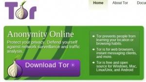 Der Tor-Browser soll eine anonyme Internetnutzung ermöglichen., Tor-Netzwerk