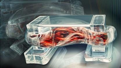 Künstlerische Darstellung des Biobot: Skelettmuskeln statt Herzzellen