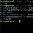 Fork: LibreSSL hat Zufallsprobleme unter Linux