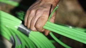 Die Bundesregierung will den Breitbandausbau finanziell fördern.