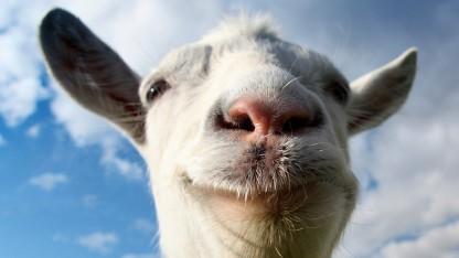 Artwork des Goat Simulators
