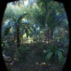 Cryengine für Oculus Rift: Eichhörnchen-Jagd im virtuellen Crysis-Dschungel