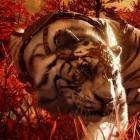 Far Cry 4 angespielt: Schießerei im Shangri-La