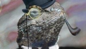 Profilbild von Lizard Squad auf Twitter