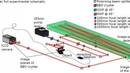 Aufbau der Spezialkamera: Foto eines Wespenflügels mit 40.000 Photonen