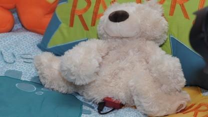 Selbst aus dem Teddybär wird ein Smartteddy, mit ungünstig positionierter Elektronik.