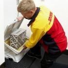 Paketbutler: Telekom und Zalando bringen Paketbox für die Wohnungstür
