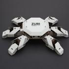 Zoobotics: Vier- und sechsbeinige Pappkameraden