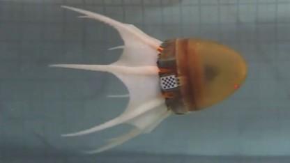 Robotischer Krake: acht elastische Tentakeln aus Silikon